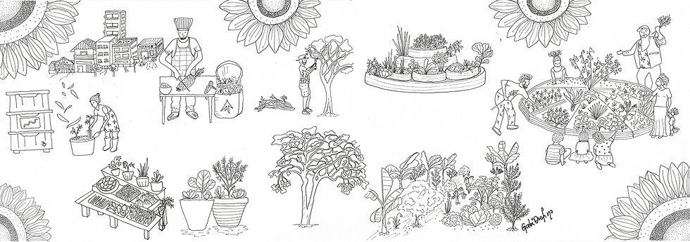 Agricultura urbana - Ilustrações feitas para a Comcap sobre compostagem e agricultura urbana