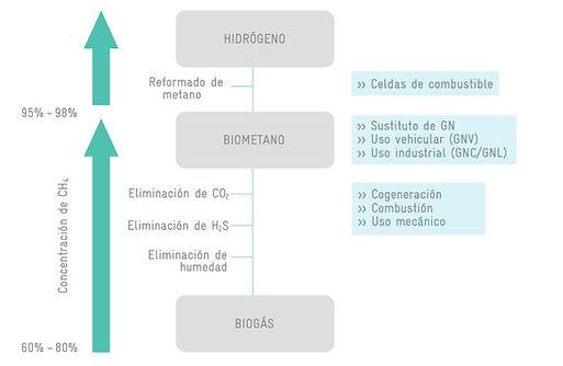 Figura_7.jpg