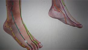 Le mystère des zones douloureuses en réflexologie