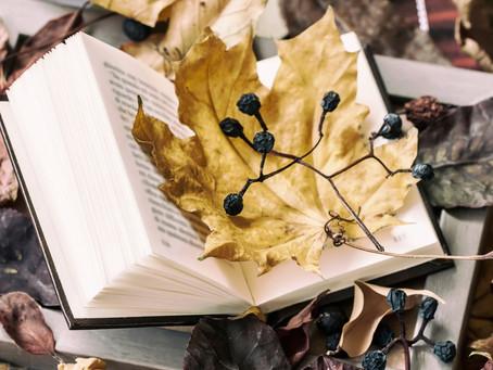"""Poesie im Advent: """"Der Weihnachtsbaum"""""""