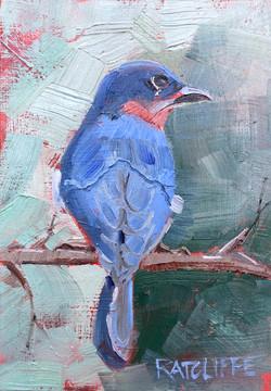 "Bluebird Back 7""x5"" | $75"