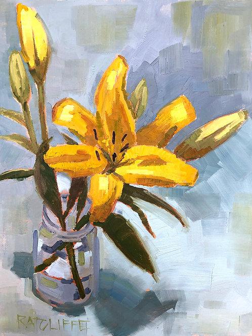 Lily IV