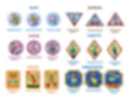 GS Badges.png