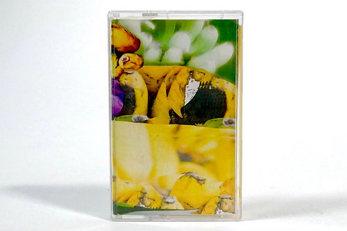 swarvy - s u p e r f o o d s (cassette)