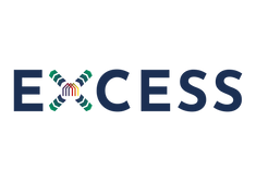 Excess_Logo RGB.png