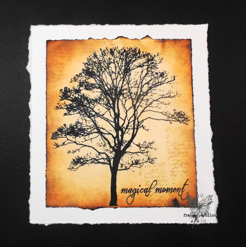 france_papillon_tree.jpg