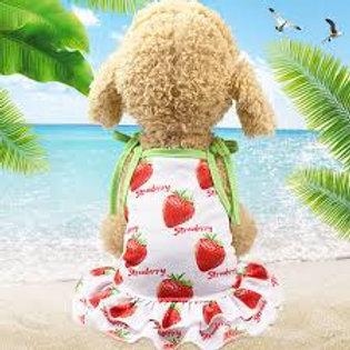 Dog strawberry sundress