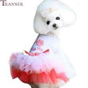 Doggie Dress