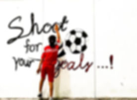 shoot for your goals_edited.jpg