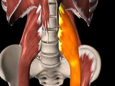 Psoas - Is it the key to everything?