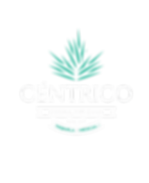 Centrico White Logo.png