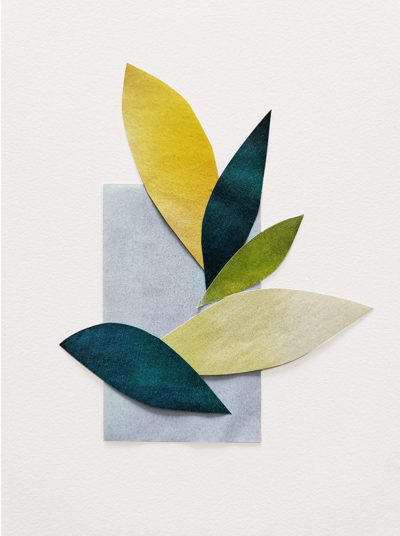 Organic Composition I