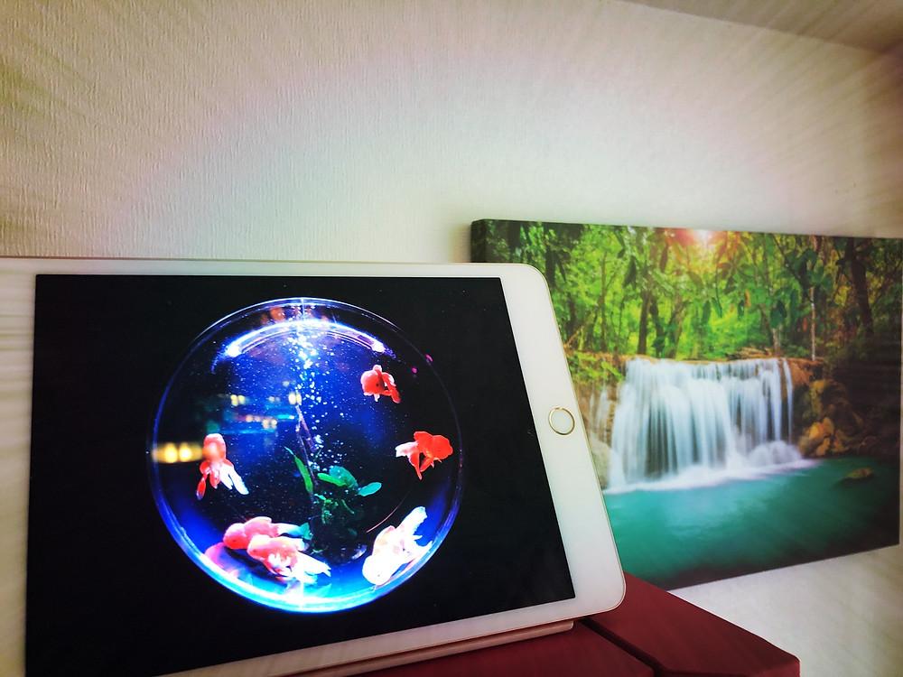 風水写真術 デジタルフォトフレーム IPadの風水活用 コンテンポラリー風水フジワラユカ 財の風水