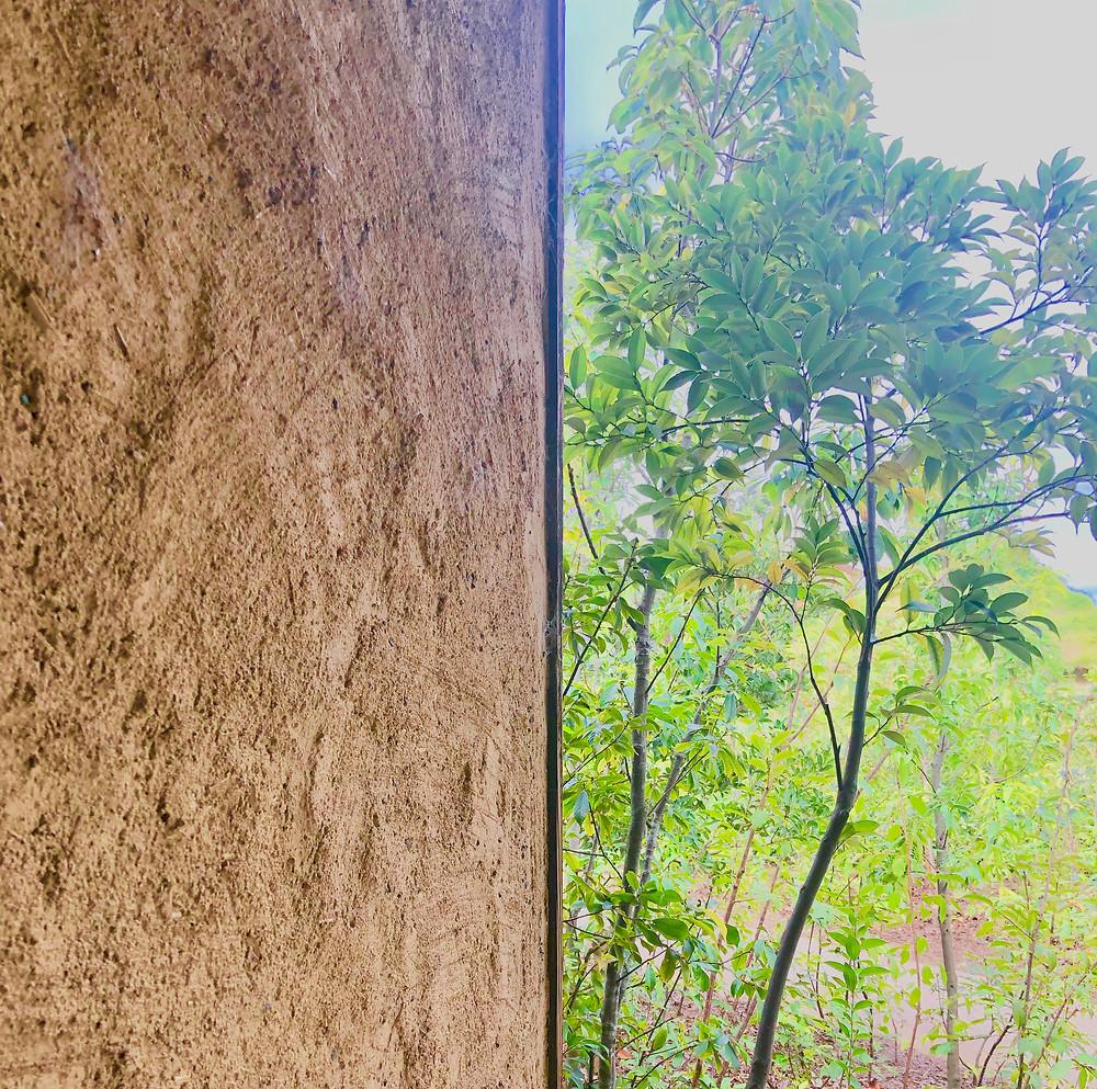 近江八幡ラコリーナクラブハリエ 風水建築 藤森照信 コンテンポラリー風水コンサルタントのフジワラユカ