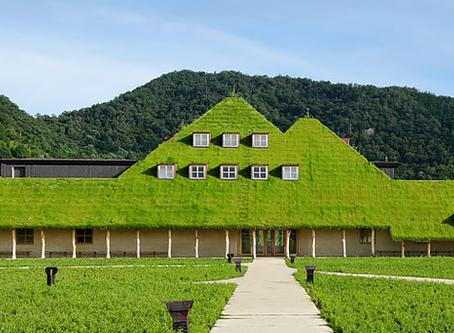 【風水】石・土・草・木の家屋が懐かしいと感じるのは日本人だからじゃなくもっと古い記憶✨