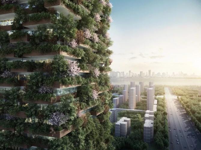 成都の庭付きタワーマンション コンテンポラリー風水コンサルタントフジワラユカ