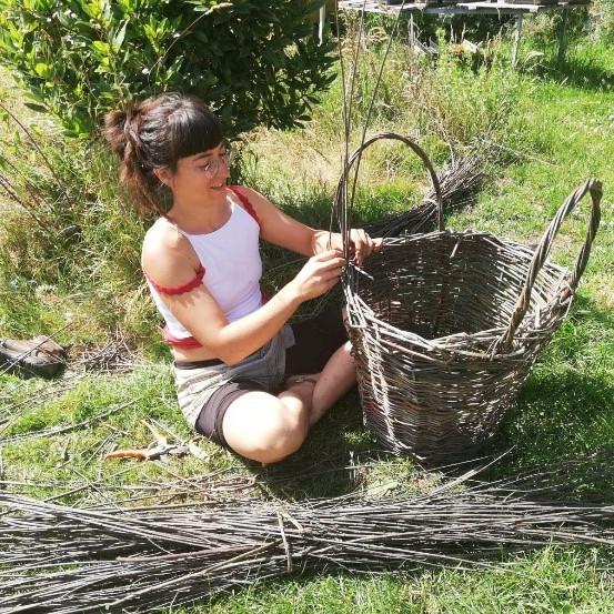 Willow Basket-Making Workshop