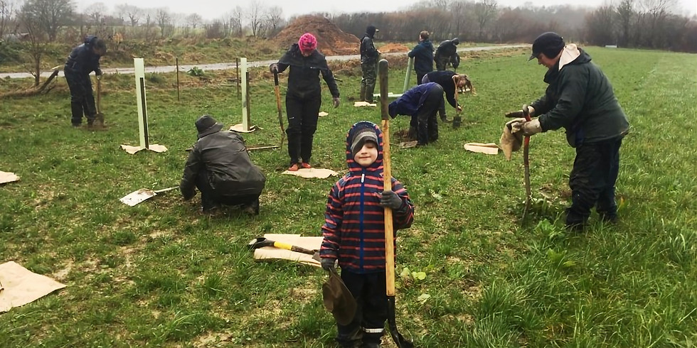 Children's Tree-Planting Day
