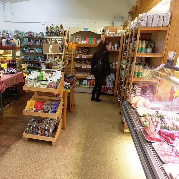 Shop Feb 20 cs.jpg
