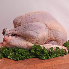 Whole Turkey.jpg