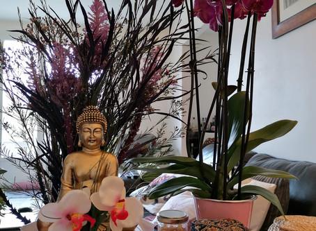 Réouverture de votre espace bien-être en massages Thai traditionnels