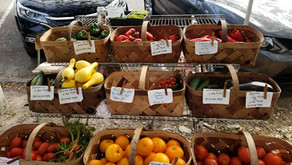 Tampa Bay Area Farmers Markets- Shopping local is better for the environment and local economy.