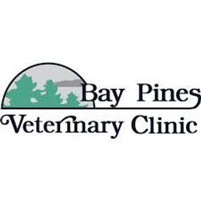 bay pines vet.jpg