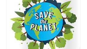 How to help save the environment from home!