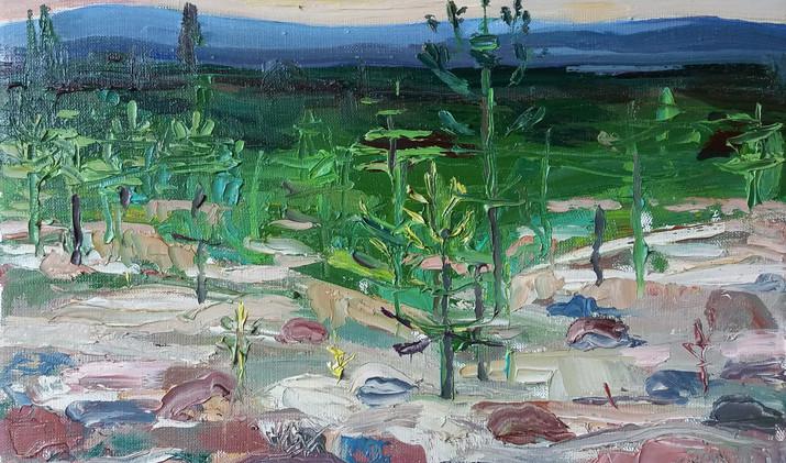 Blue horizont 2019 30-40 cm oil canvas