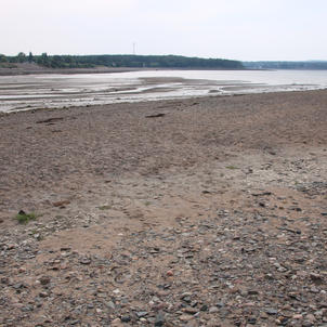 Pebble Beach Low Tide