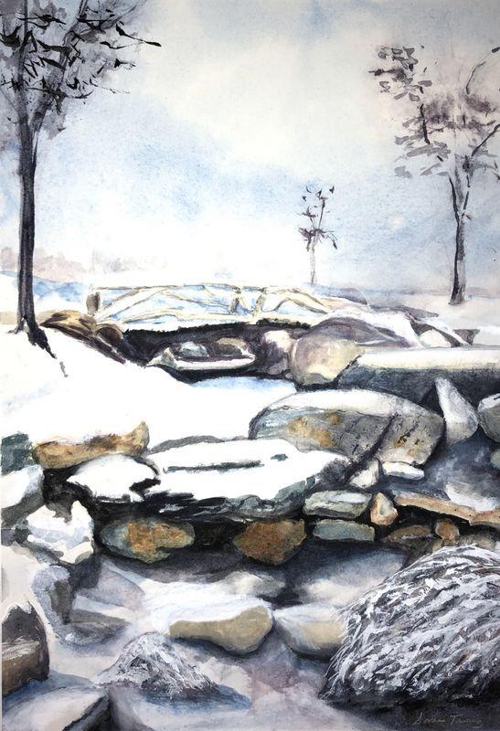 winter_garden_in_manzanar.jpg