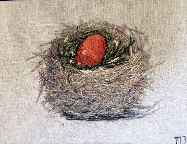nest_with_orange_egg.jpg