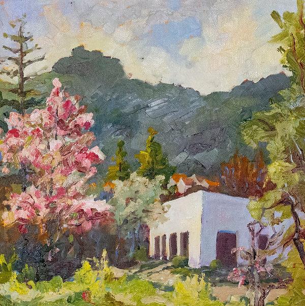 Moraga Blossom View.jpg