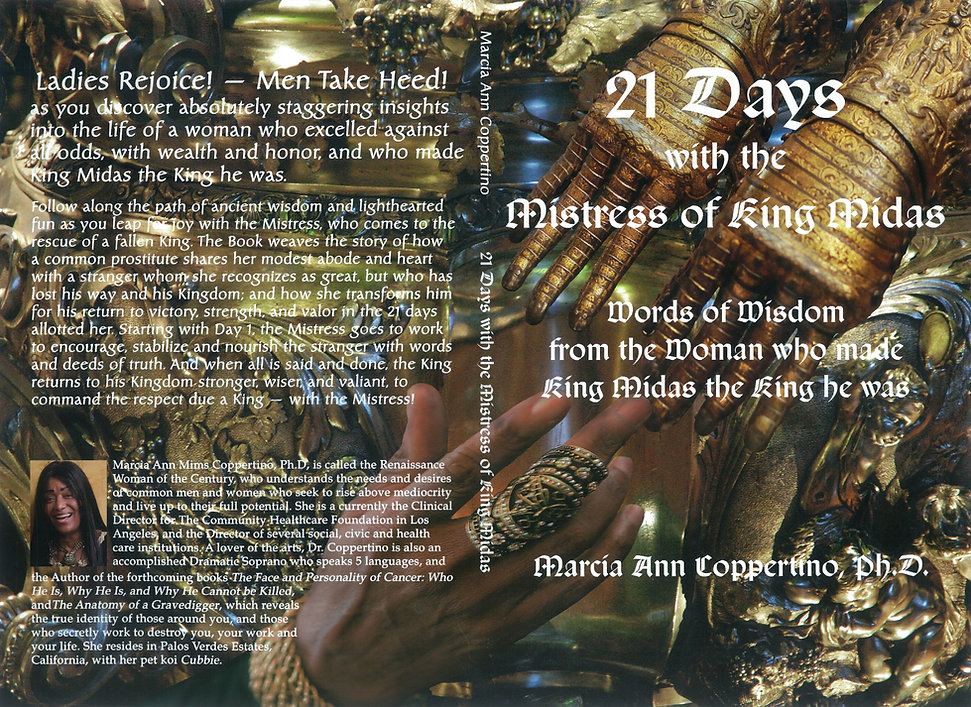 21 DAYS hd2 book cover resize.jpg
