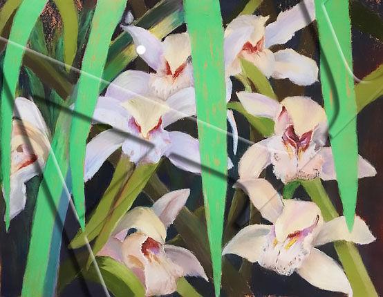 3_mary_millman_orchids_1.jpg
