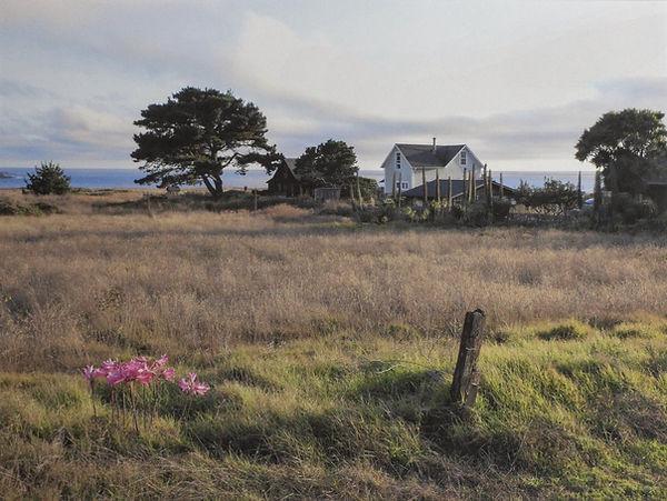 Field - House - Sea.jpg