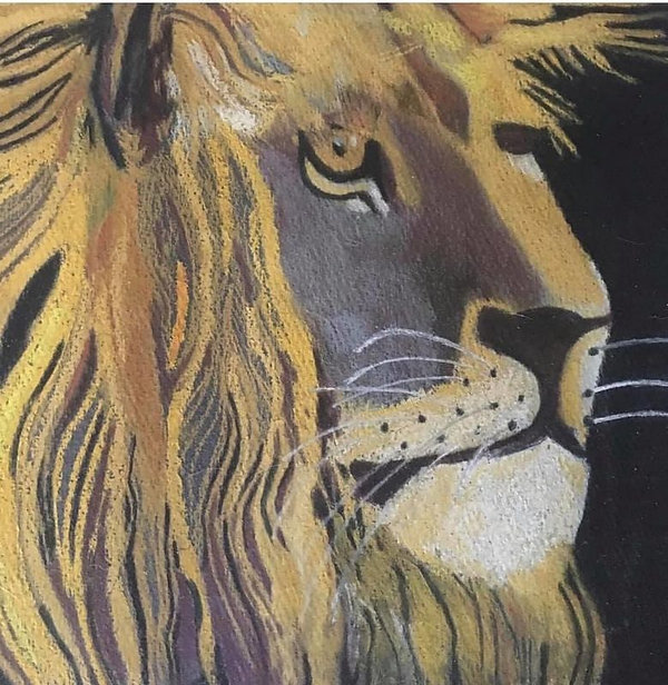 the_lion.jpg
