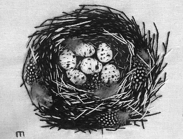 bird_nest_in_black_and_white.jpg