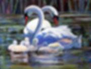 swan_family.jpg