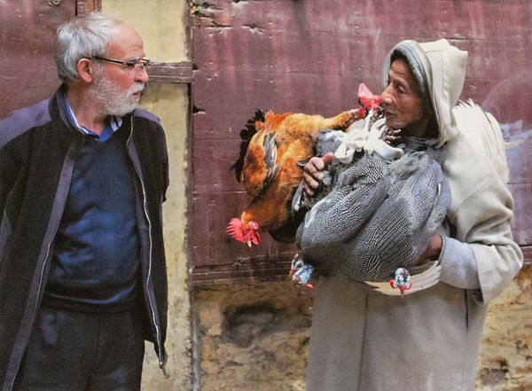 Nomad Selling Poultry - Morocco.jpg