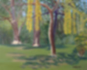 weeping_willow_and_oak_trees.jpg