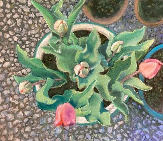 six_tulips.jpg