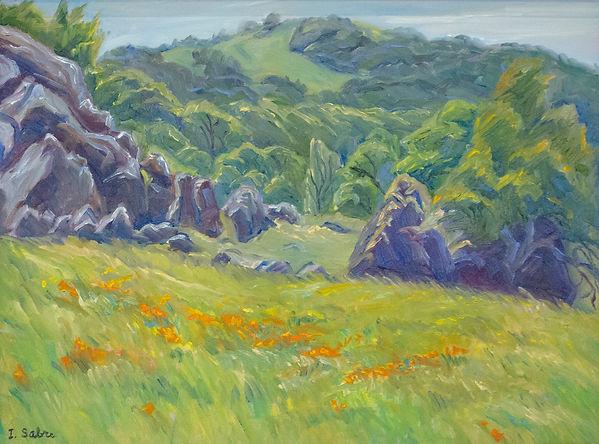 Mt. Diablo Spring.jpg