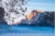 Winter Fog YNP.jpg