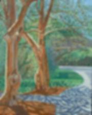 Birch and Ginko Trees.jpg