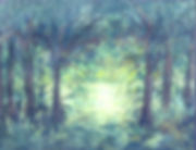 Forrest Primeval.jpg