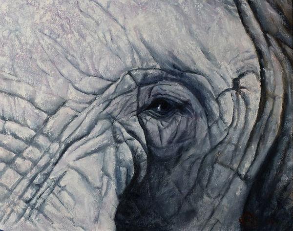 i___elephant.jpg