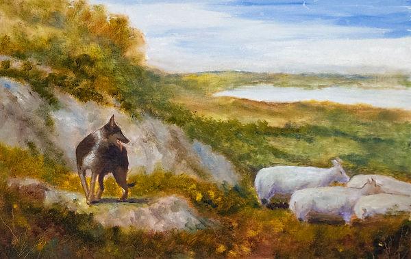 Herding Dog.jpg