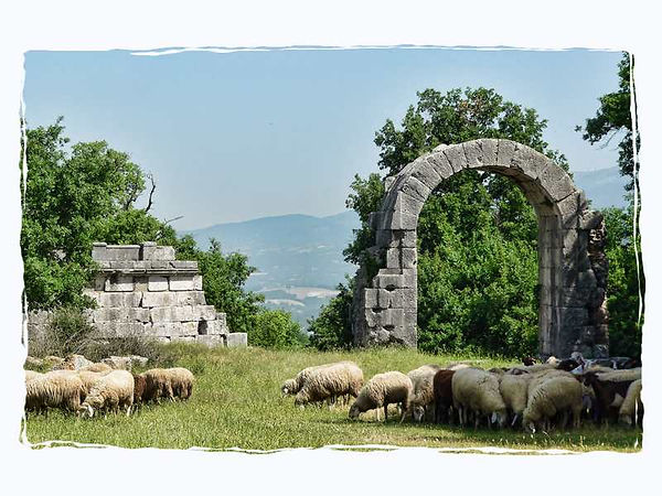 sheep_now_graze_at_the_old_roman_walls.j