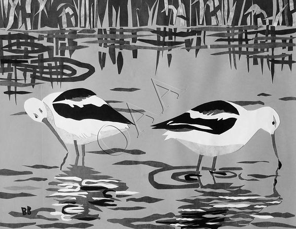 avocets_at_meeker_slough_2.jpg